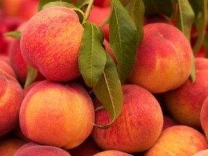 Las propiedades del durazno en la nutrición  | La Guía de las Vitaminas