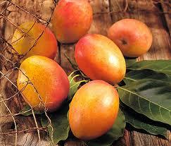 Propiedades del mango, como antioxidante