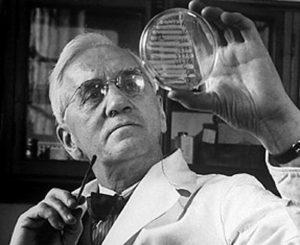 Quién descubrió la penicilina   La Guía de las Vitaminas
