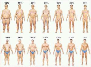 Calcular porcentaje de grasa corporal, para que sirve