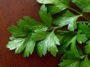 Guía de las verduras, Perejil | La Guía de las Vitaminas