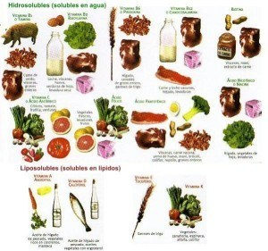 Vitaminas hidrosolubles y liposolubles, alimentos