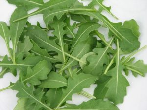 Guía de las verduras, Rúcula | La Guía de las Vitaminas