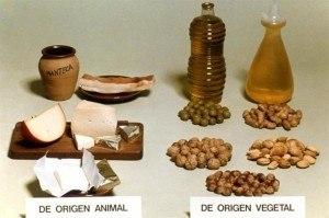 Beneficios de consumir alimentos que contienen lípidos | La guía de las Vitaminas