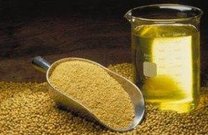 Contraindicaciones de la lecitina de soja