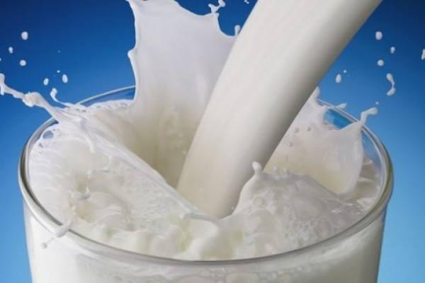 10 alimentos proteicos de origen vegetal y animal - La
