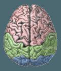 síntomas-de-la-esquizofrenia