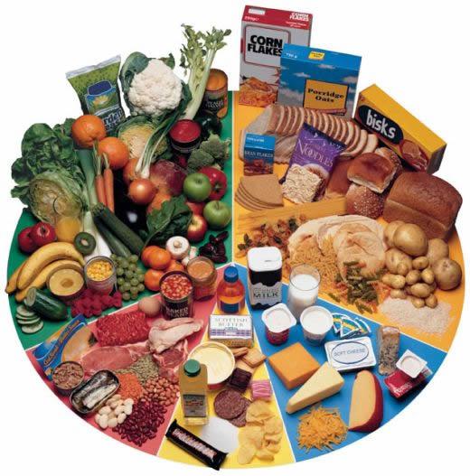 como perder grasa alimentos