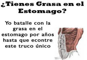 grasaenelstomago338x235