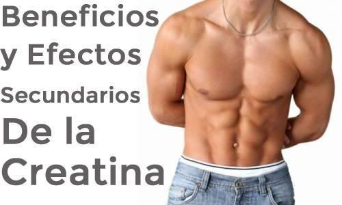 beneficios-efectos-creatina
