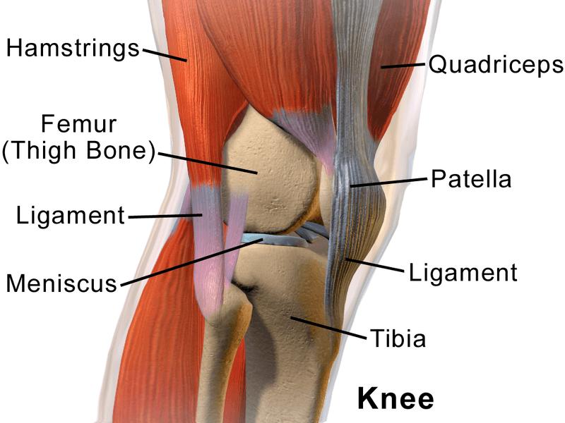Como aliviar el dolor de rodillas|La Guia de las Vitaminas
