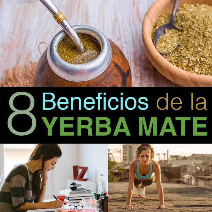 8-beneficios-de-la-yerba-mate
