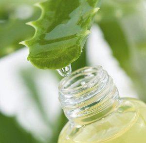 Beneficios del jugo de Aloe Vera