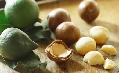 nueces-de-macadamia