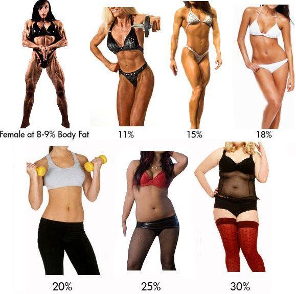 comparacion-de-porcentaje-de-grasa-corporal2