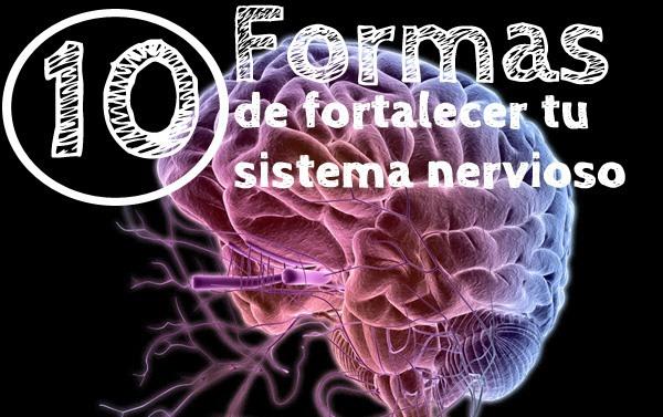 fortalecer-tu-sistema-nervioso2