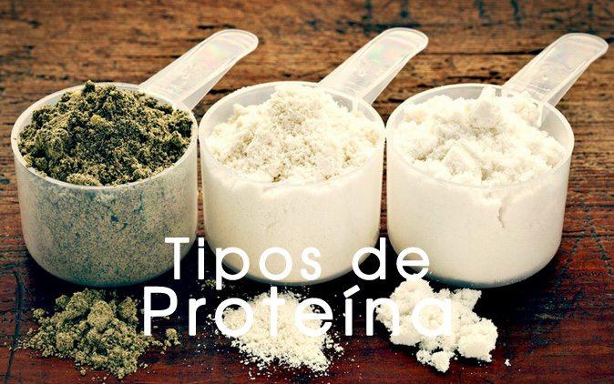 tipos-de-proteina