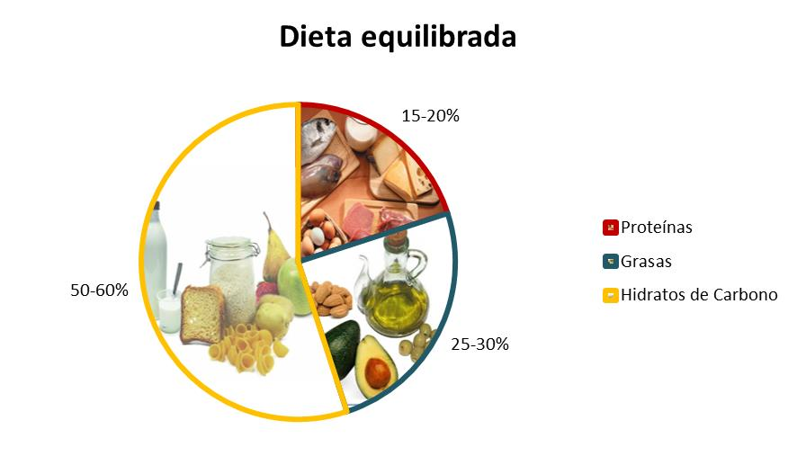 dieta-equilibrada-proteína