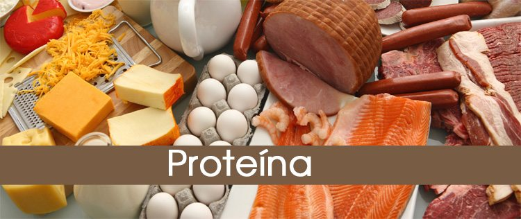 proteina-1