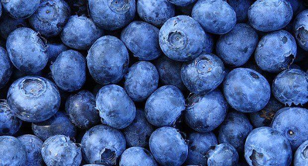 alimentos más densos en nutrientes-arándanos