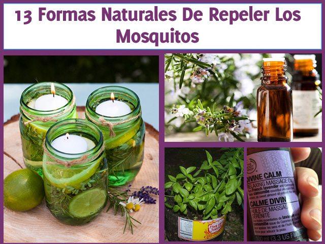 formas-de-repeler-mosquitos