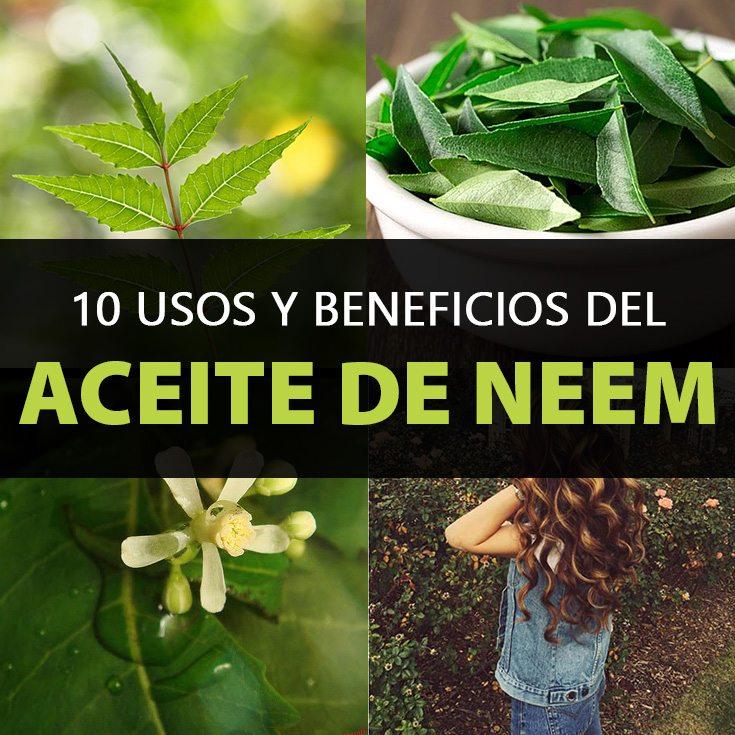 10-usos-del-aceite-de-neem