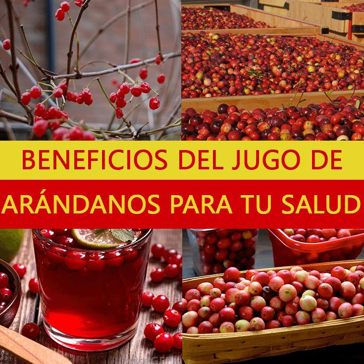jugo_de_arandanos_beneficios_para_tu_salud