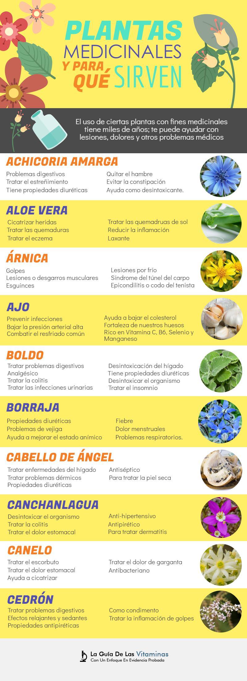 Cabello de angel uso medicinal