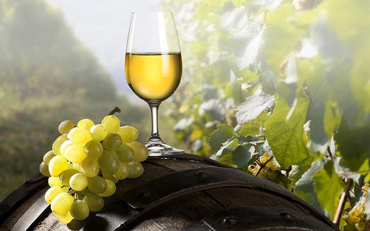 vino-blanco-sobre-barrica