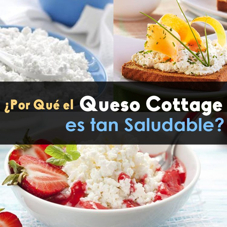 Cottage Queso