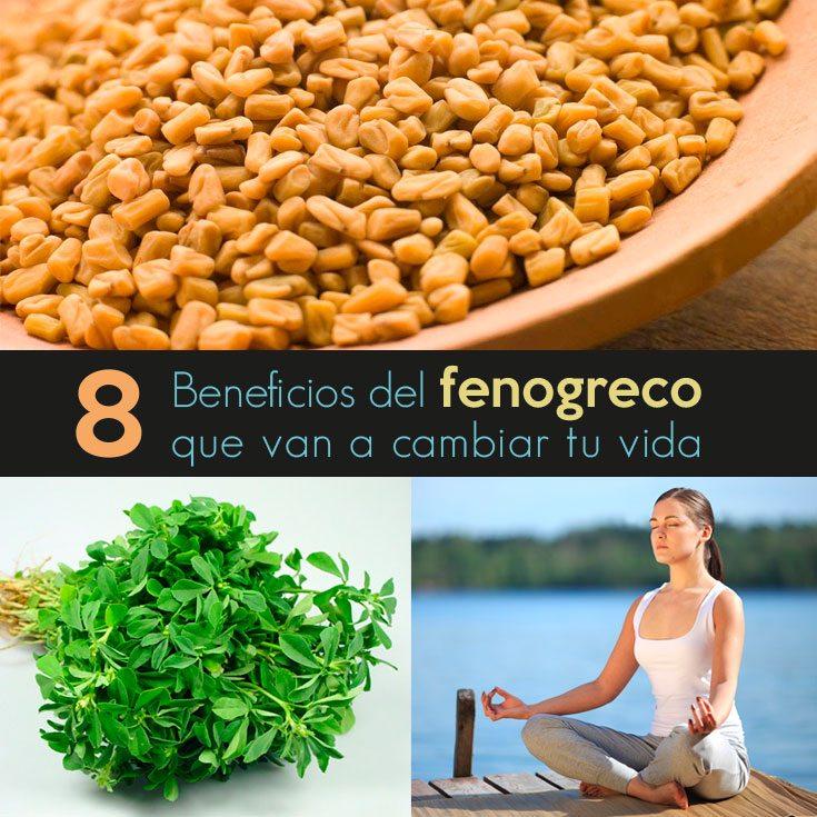 8-beneficios-del-fenogreco-que-van-a-cambiar-tu-vida