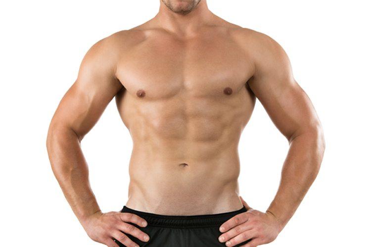 Músculo Oblicuo Externo: Anatomía Y Ejercicios - La Guía de las ...