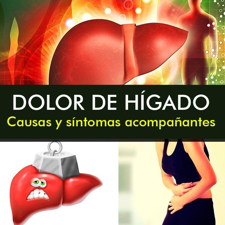 Dolor De Hígado: Causas, Síntomas Y Tratamiento - La Guía de las ...