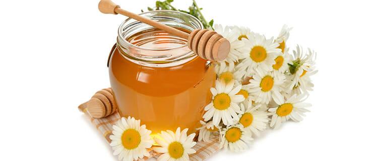 manzanilla con miel para adelgazar